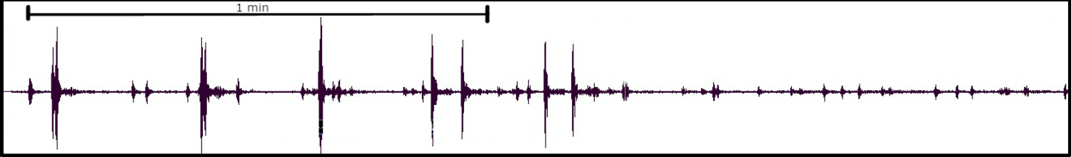 The energy shown here is from multiple artillery shots fired during training at Camp Pendleton in Southern California. What makes these waveforms interesting is that there are so many distinct impulsive signals clustered in time with a very slow move-out, which can be seen in the expanded view. Move-out is a term used to describe the amount of time it takes for the waves to go from one station to the next and can be converted into the actual speed of the waves, in this case the sonic waves produced by the shots fired traveled at 235m/s. Normally the speed of a sonic boom is the speed of sound, which is 343m/s in dry air at 20°c, but due to real-world atmospheric conditions the value is lower. Click on the isolated waveform for more information and the noise advisory released by Camp Pendleton.